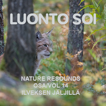 Luonto soi vol. 14 / Ilveksen jäljillä / Finnish Nature Resounds / Following the Footsteps of the Lynx