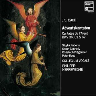 J.S. Bach / Adventskantaten / Collegium Vocale / Herreweghe / Rubens / Connolly / Pregardien / Kooy